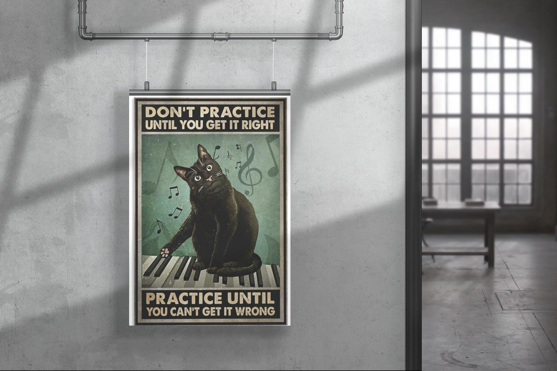 Poster Cat Don't practice until you get it right practice until you can't get it wrong 12