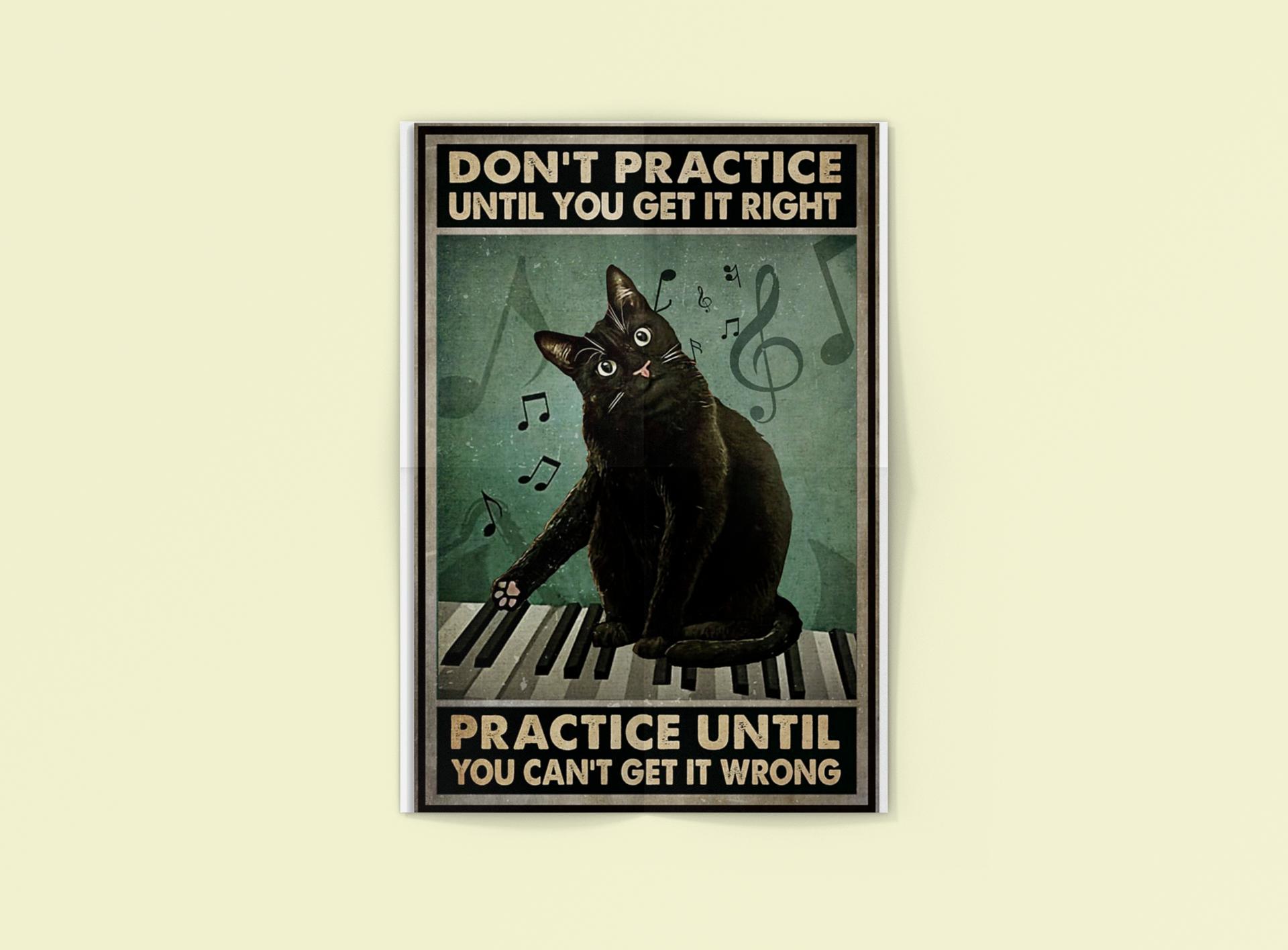Poster Cat Don't practice until you get it right practice until you can't get it wrong 14
