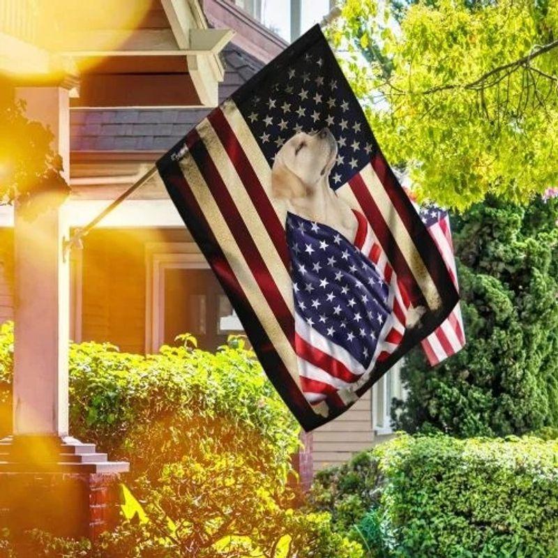 Labrador retriever American flag 7