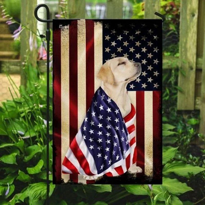 Labrador retriever American flag 8