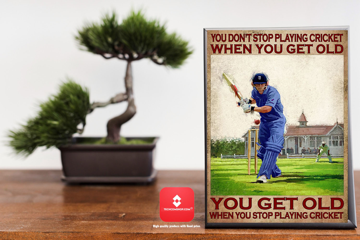 You don't stop playing cricket when you get old poster 7