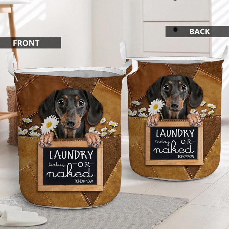 Dachshund Laundry today or naked tomorrow basket laundry 7