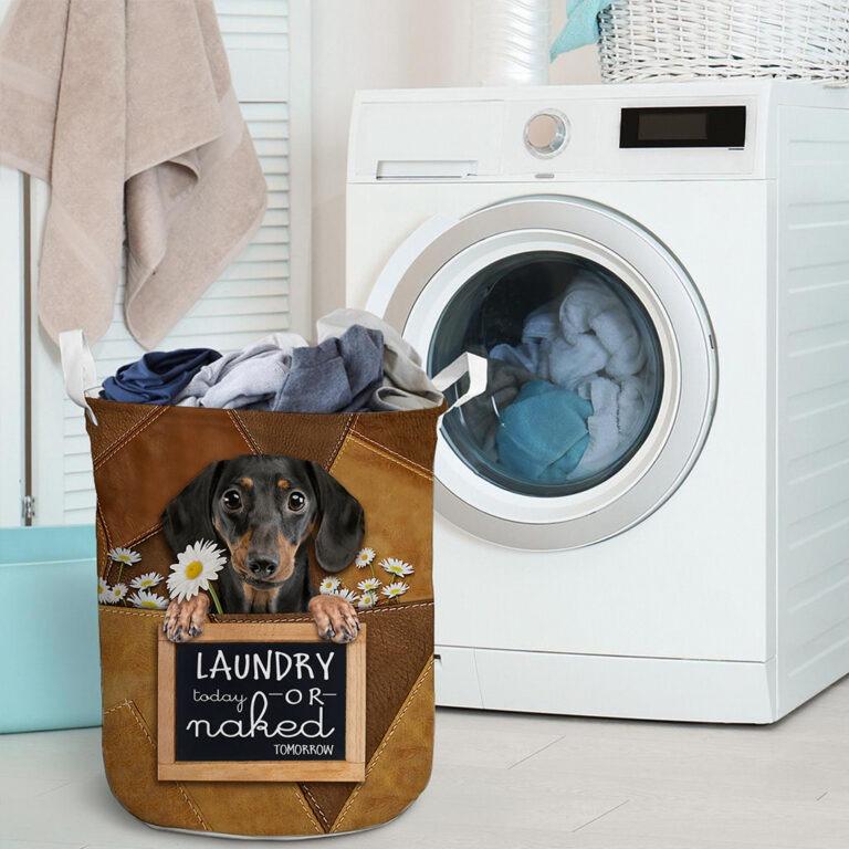 Dachshund Laundry today or naked tomorrow basket laundry 9