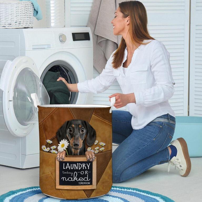Dachshund Laundry today or naked tomorrow basket laundry 8