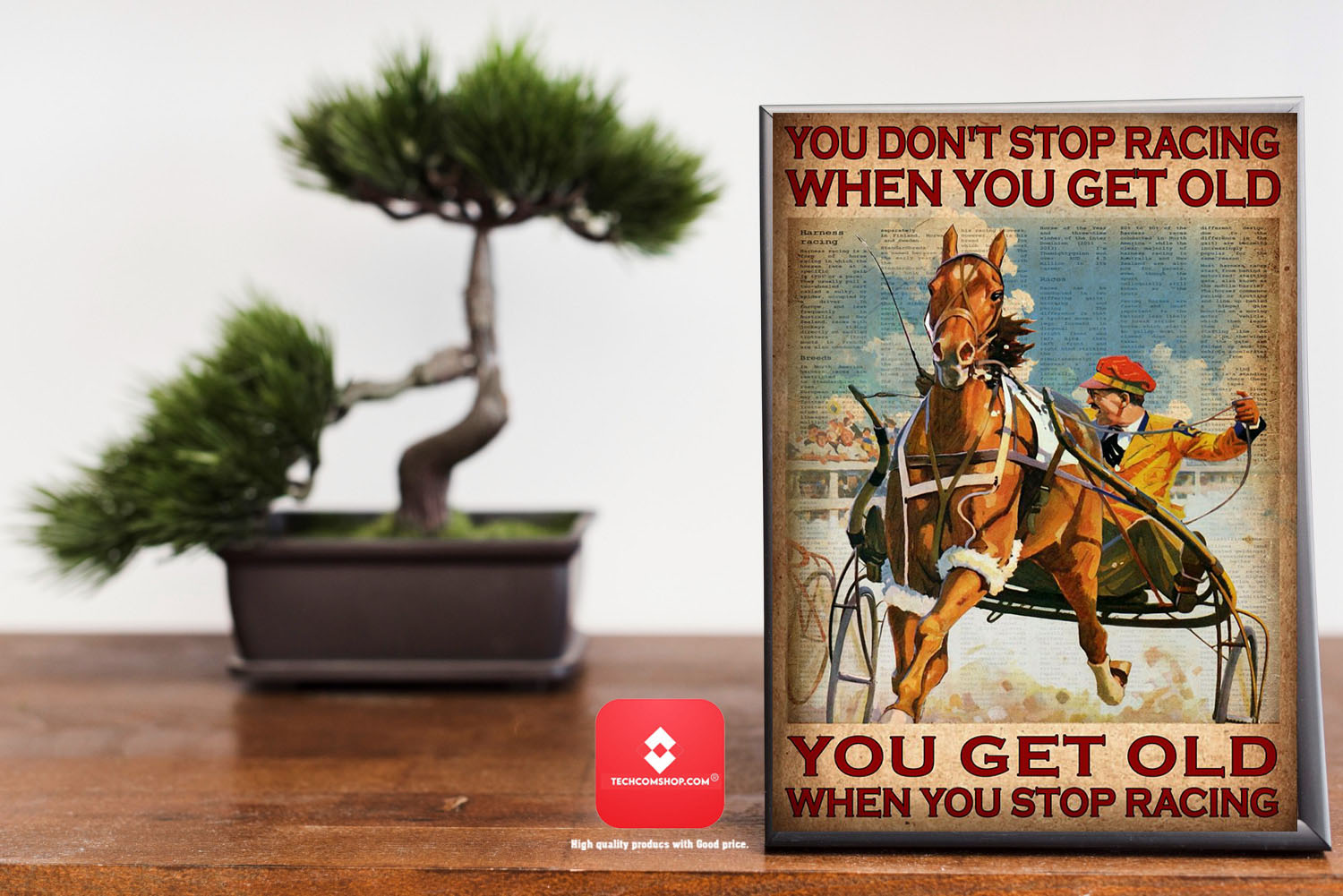 You don't stop racing when you get old poster 7
