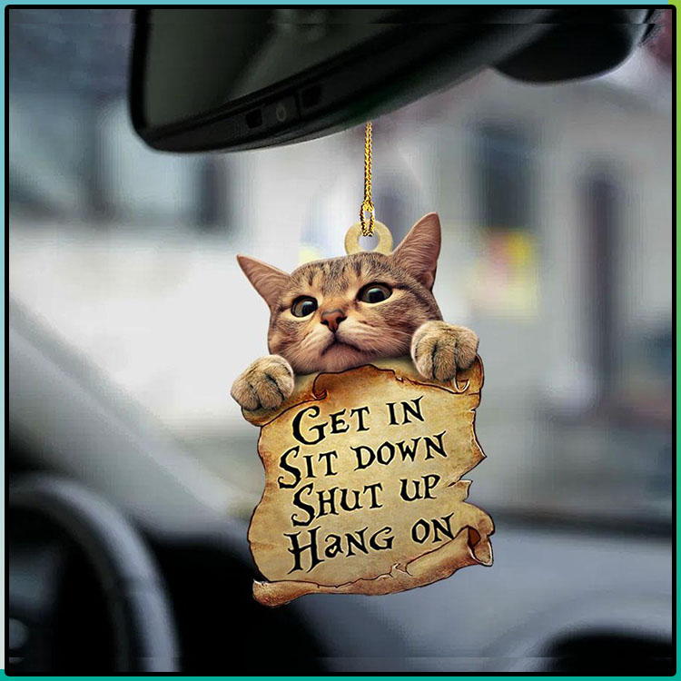 Cat Get In Sit Down Shut Up Hang On Ornament2