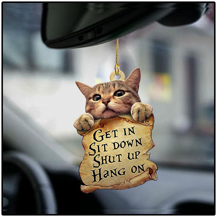 Cat Get In Sit Down Shut Up Hang On Ornament4