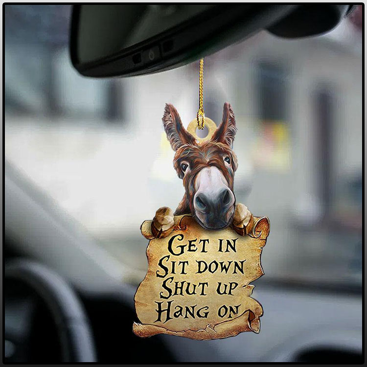Donkey Get In Sit Down Shut Up Hang On Ornament1