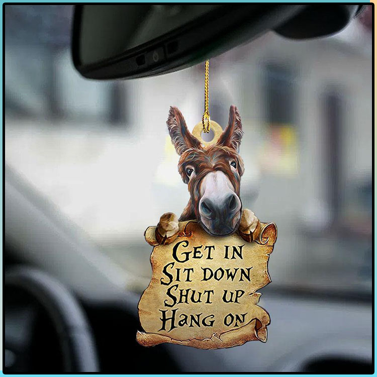 Donkey Get In Sit Down Shut Up Hang On Ornament2