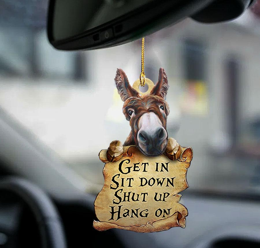 Donkey Get In Sit Down Shut Up Hang On Sided Ornament