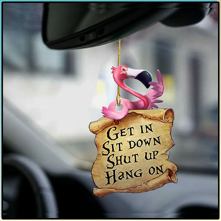 Flamingo Get In Sit Down Shut Up Hang On Ornament4
