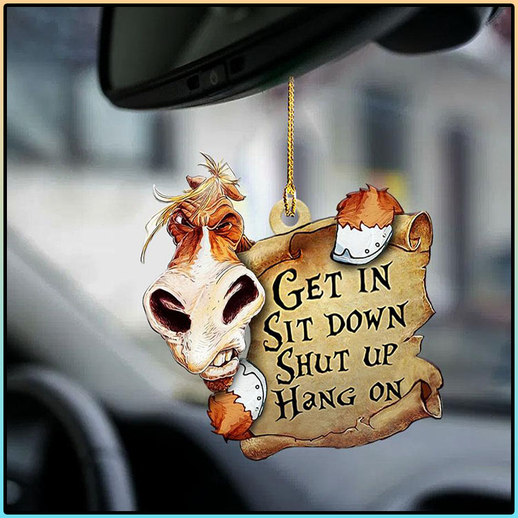Horse Get In Sit Down Shut Up Hang On Ornament1