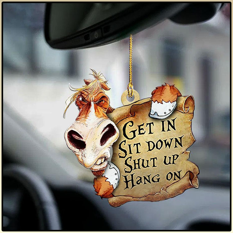 Horse Get In Sit Down Shut Up Hang On Ornament4