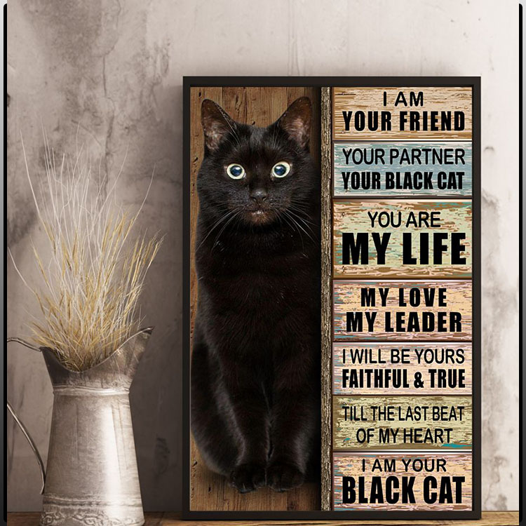 I am your friend your partner your black cat you are my life poster6