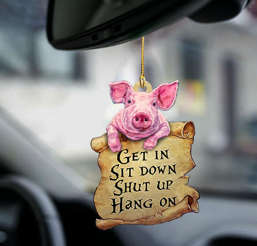 Pig Get In Sit Down Shut Up Hang On Ornament