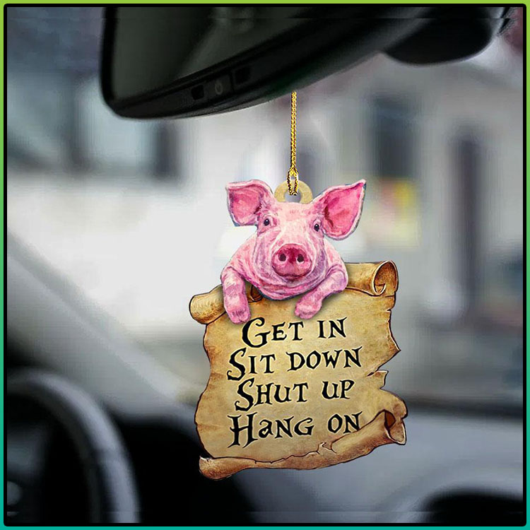 Pig Get In Sit Down Shut Up Hang On Ornament4