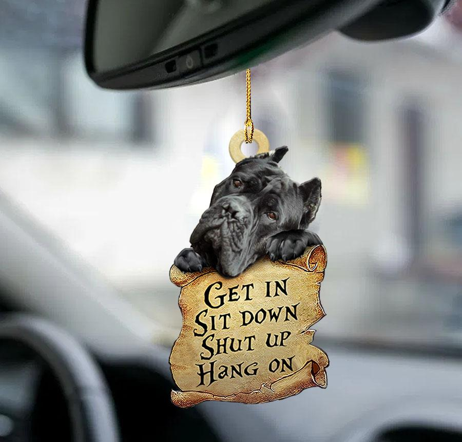 Cane Get In Sit Down Shut Up Hang On Ornament