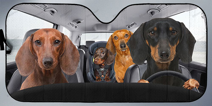 Dachshunds Family Driving Car Sunshade 3