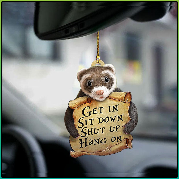 Ferret get in sit down shut up hang on ornament2