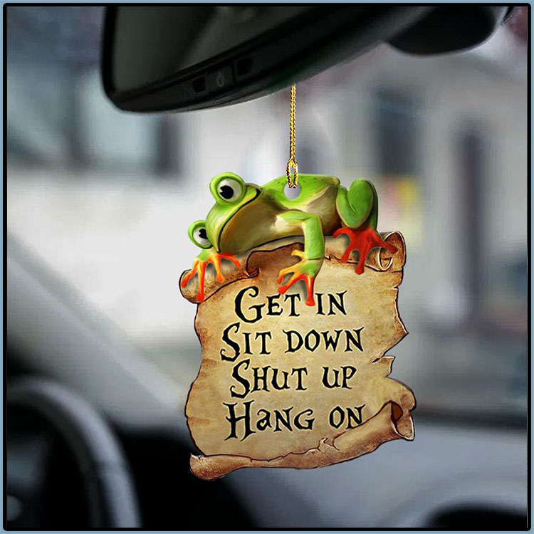 Frog Get In Sit Down Shut Up Hang On Ornament3