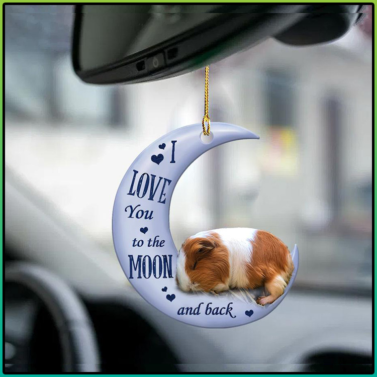 Guinea pig I Love You to the moon and back ornament3