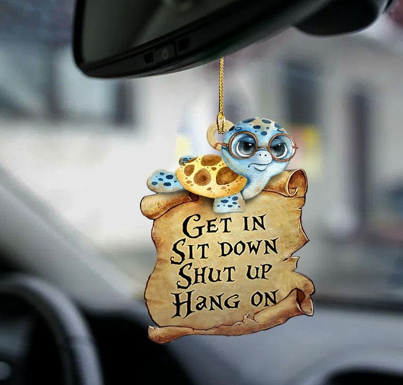 Turtle get in sit down shut up hang on ornament