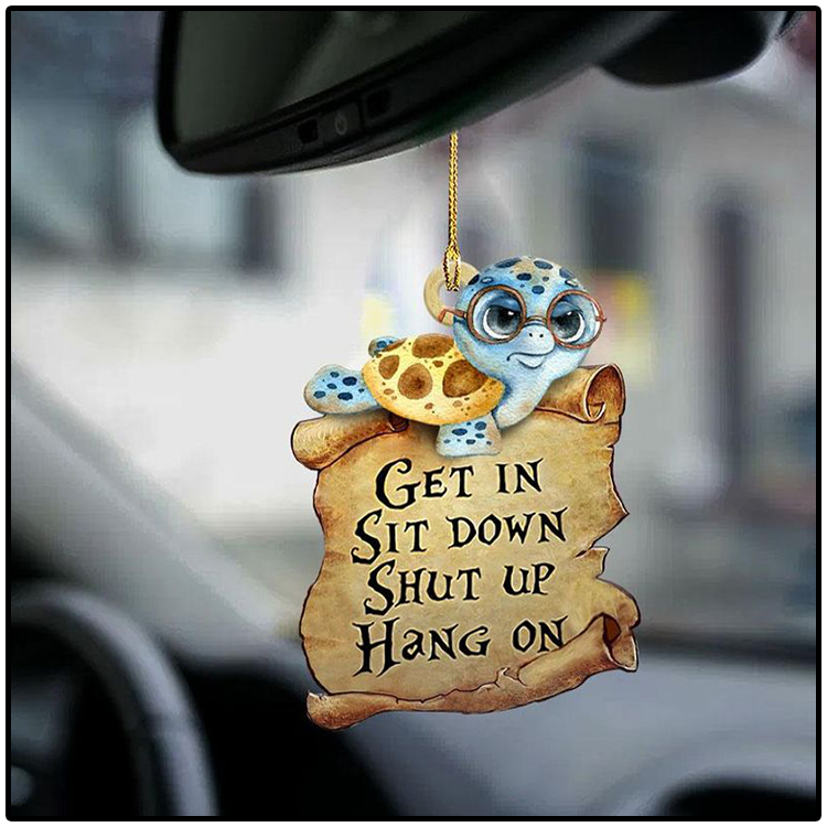 Turtle get in sit down shut up hang on ornament2