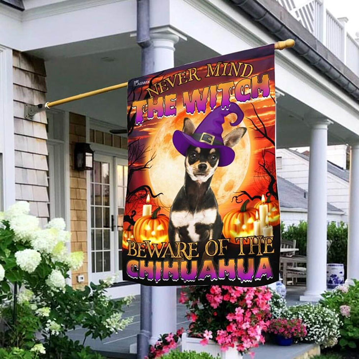 Chihuahua pumpkin never mind the witch beware of the Chihuahua flag